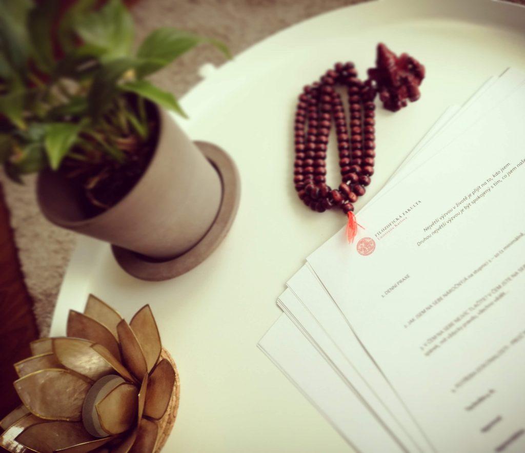 jiřina dobrovolná jóga joga lektor lekce seminář workshop